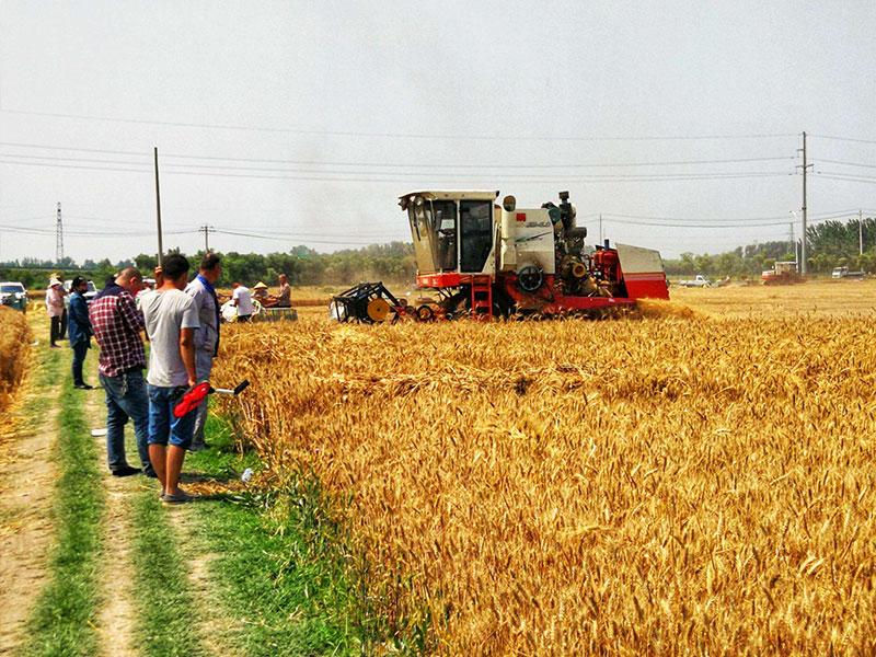 無人農業行業