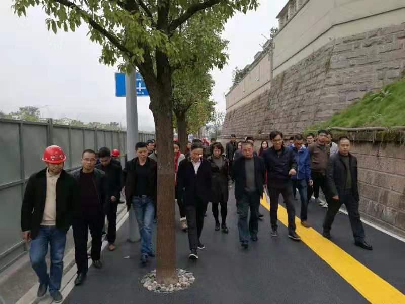 重慶兩江新區領導考察我司承建的首條自行車道