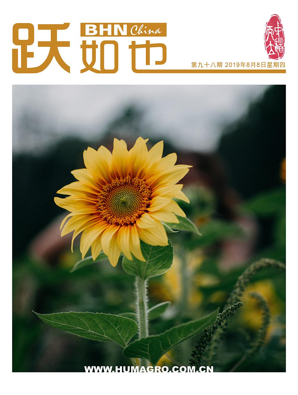《跃如也》月刊第98期