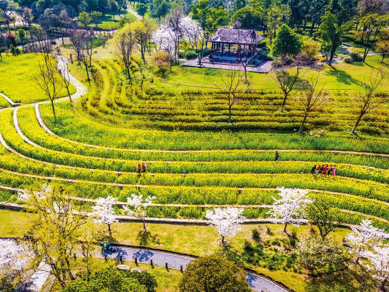 第十屆中國武漢園林博覽會荊山修復