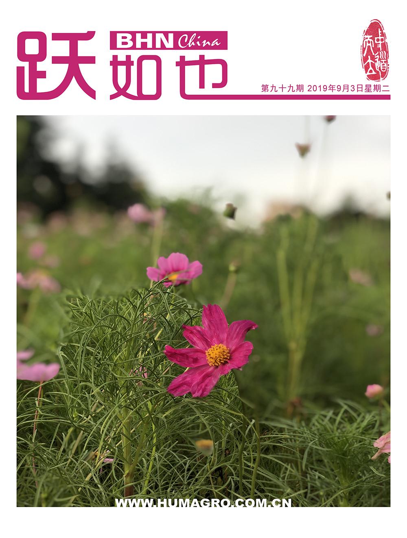 《跃如也》月刊第99期