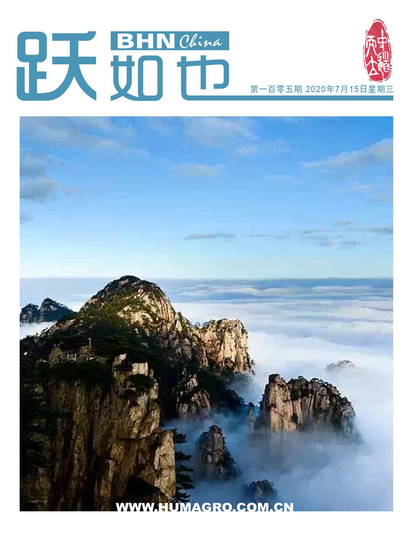 《跃如也》月刊第105期
