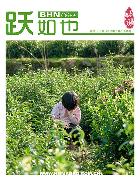 《跃如也》月刊第95期