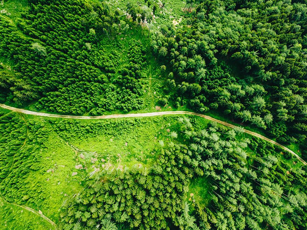 森林防火应急救援通信