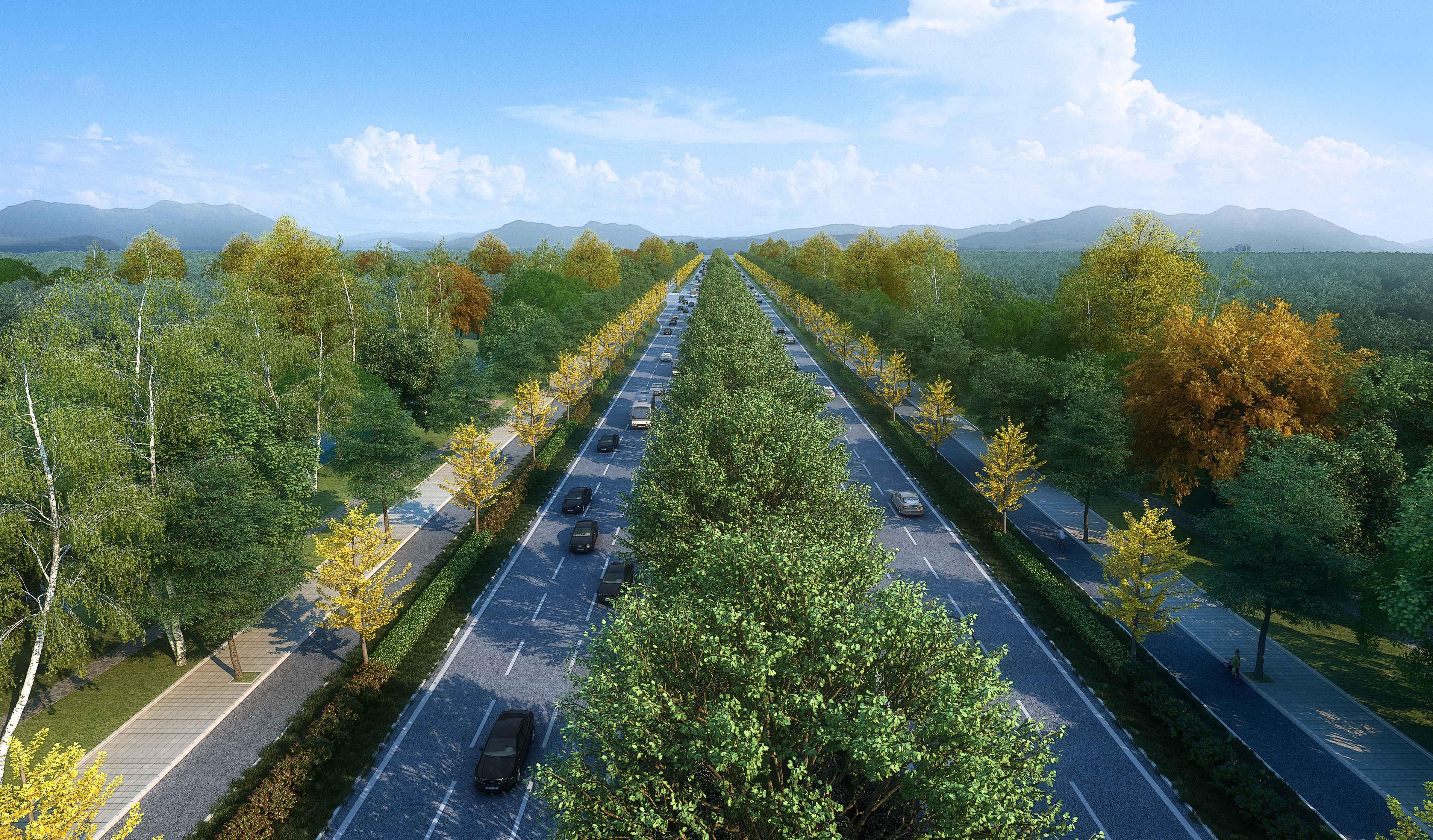 大禮路(大廣高速~京臺高速)道路及綜合管廊工程(七標段)項目-(1)