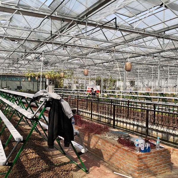 南京蘇星農場