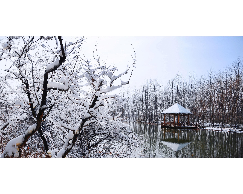 北辰綠洲濕地風景圖冊