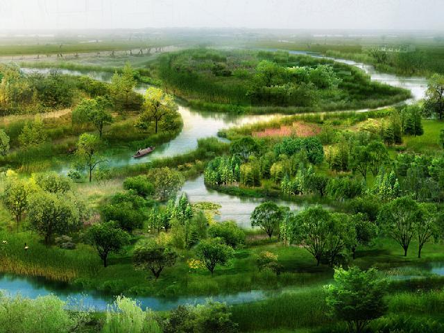 池州市平天湖白沙湿地生境工程
