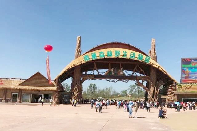 森林野生動物園