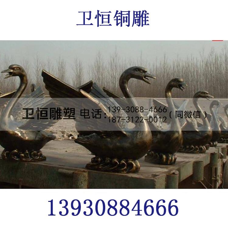 喷水铜天鹅