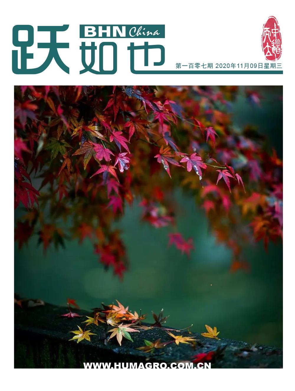 《跃如也》期刊第107期