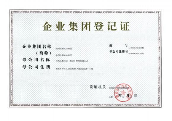 集團登記證