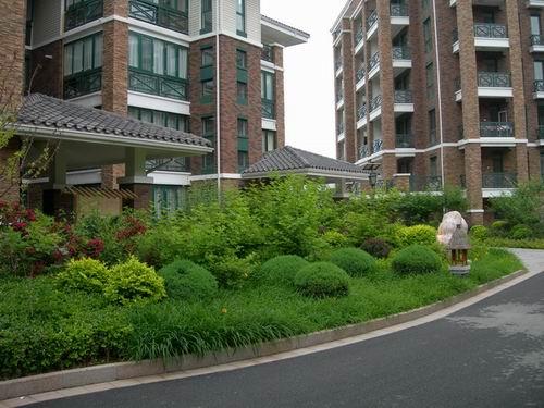 小區景觀綠化