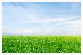 公司在環境治理方面卓有成效
