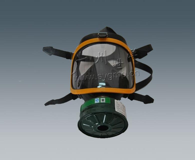 全景防毒面具