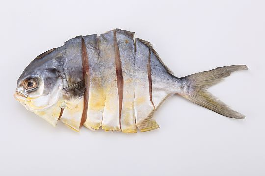 連段金鯧魚干