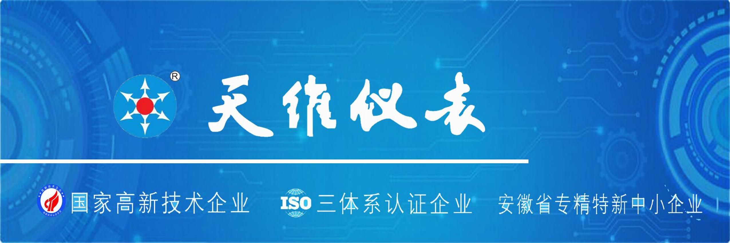 中國環博會閃耀亮相丨天維儀表與您共創萬物智聯時代