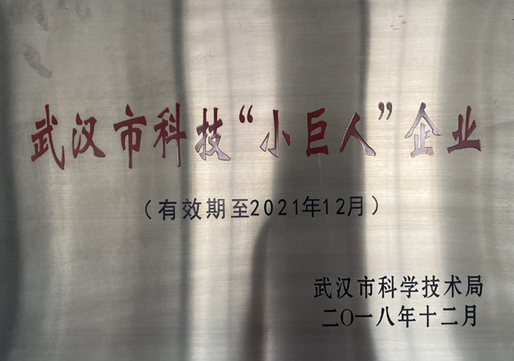 """武漢市科技""""小巨人""""企業"""