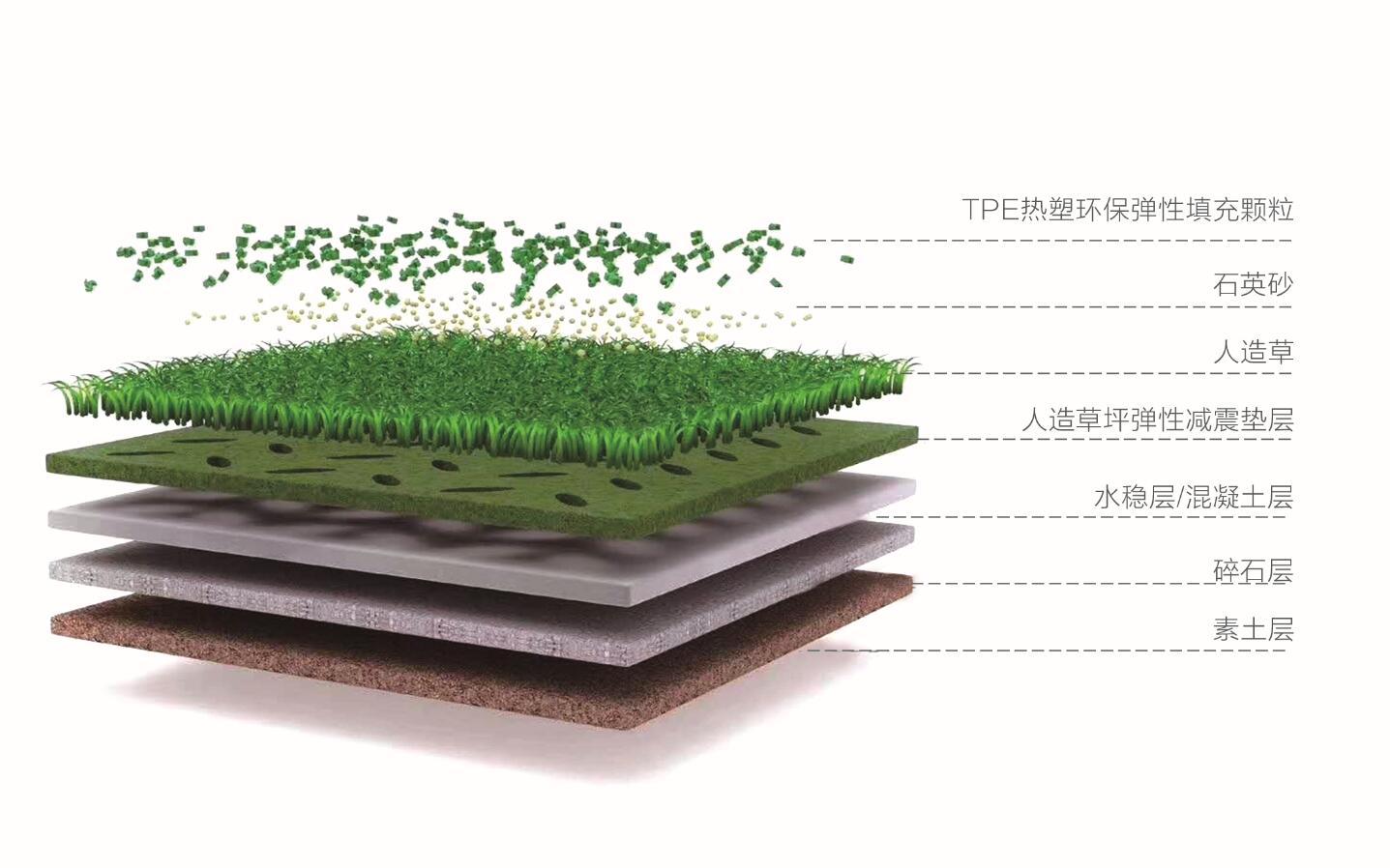 人造草坪结构分析图