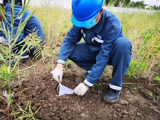 梅隴鎮某A地塊土地整理復墾(減)土壤檢測項目