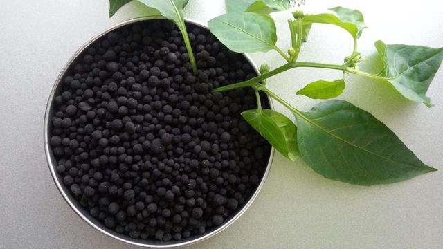 來來來!春耕時節選化肥8件大事不可缺