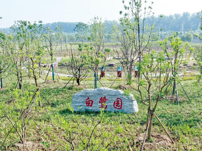 中韓石化白鷺園濕地景觀工程