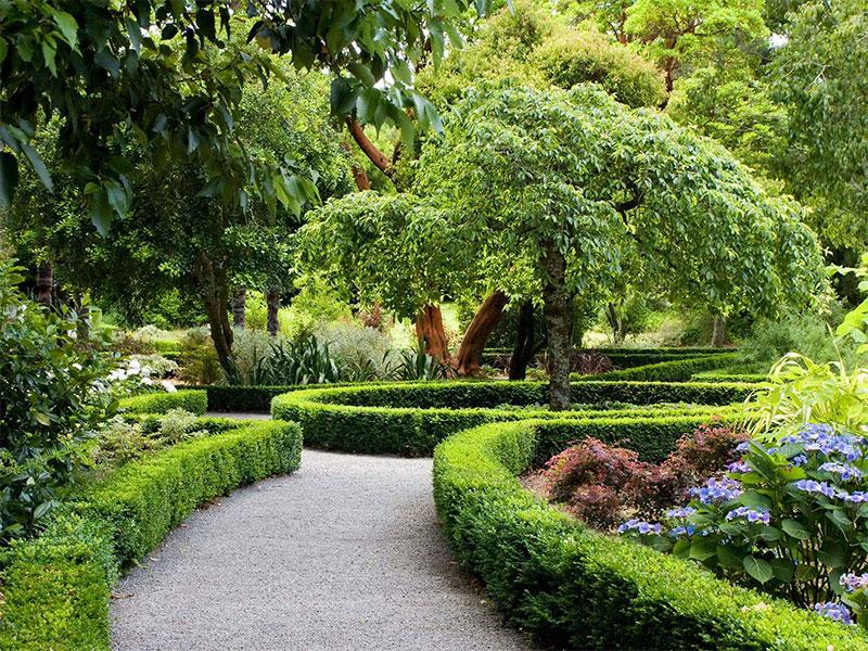 园林树木秋季养护要点