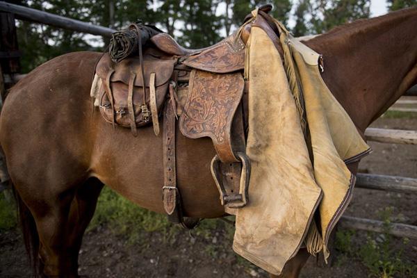 馬鞍、馬具系列膠