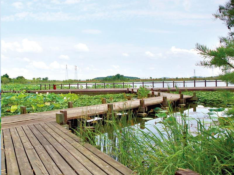 龍靈山生態公園