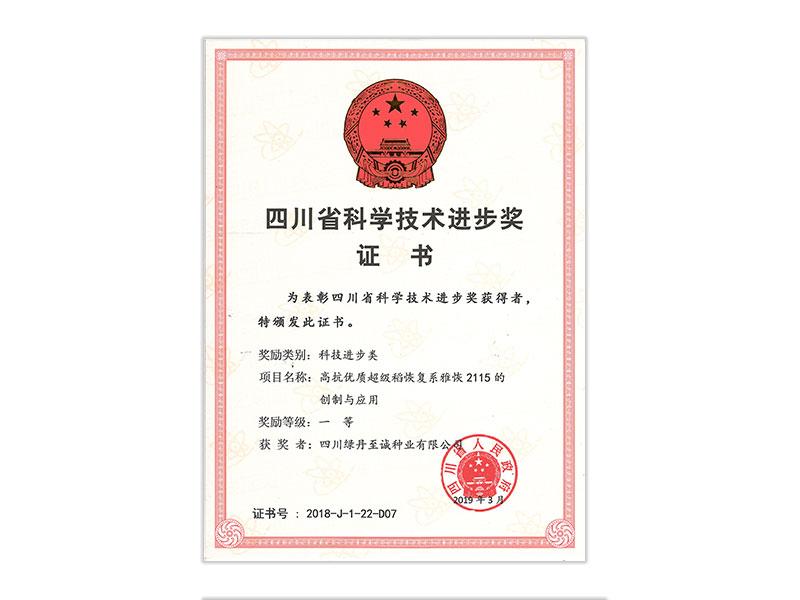 image/四川省科學技術進步獎證書