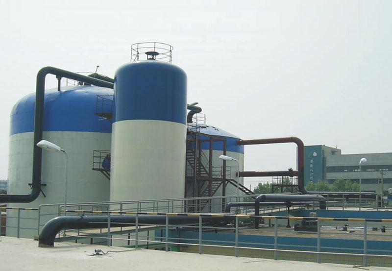 大化集團大孤山熱電廠海水脫硫裝置