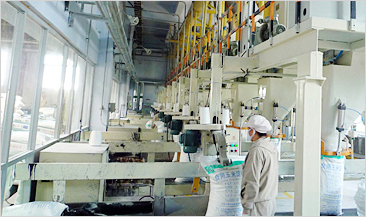 Automatic packaging engineering